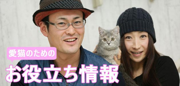 愛猫お役立ち情報のバナー