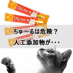 ちゅ~ると猫